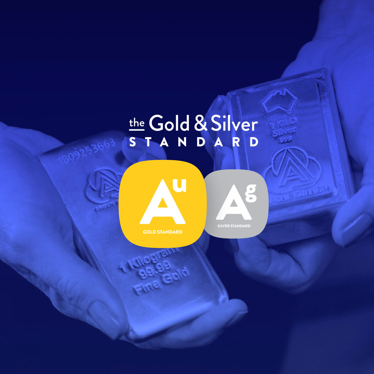 Bamboo Launches Gold & Silver Standard tokens
